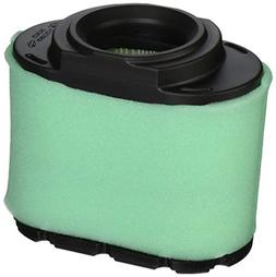 Briggs & Stratton Extended Life Series Air Filter Cartridge